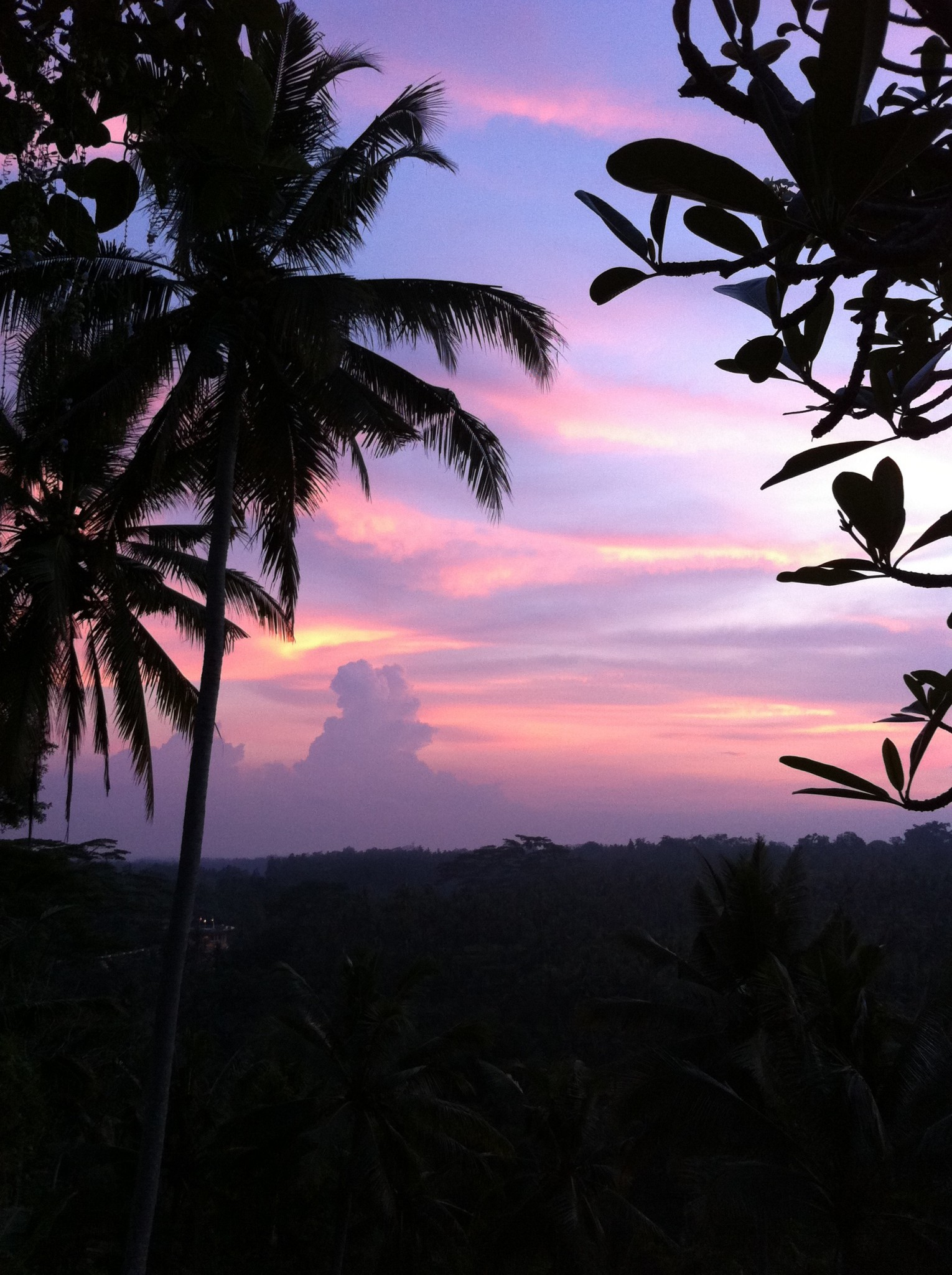 Balinese